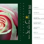 PlantsCalendarBook1