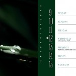 PlantsCalendarBook4